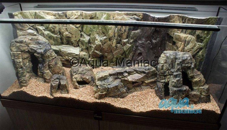 Aquarium Background 3d Root And Rock Style Back Drop For