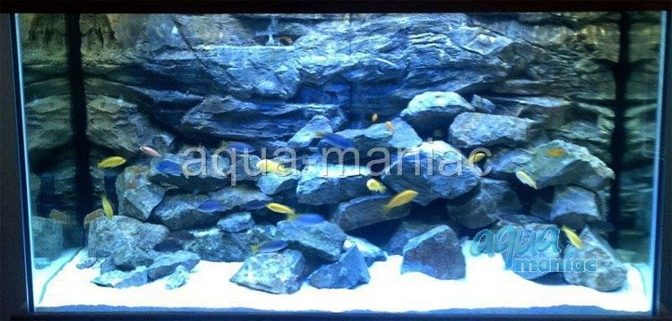 how to apply fish tank background