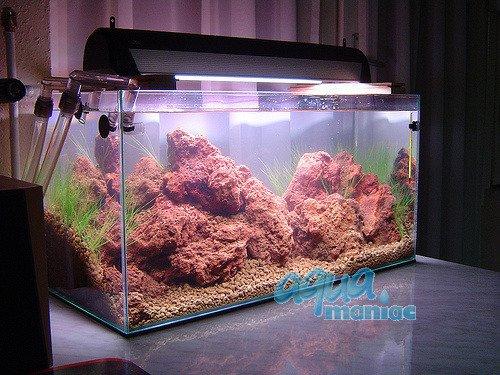 Aquarium lava rocks for your fish tank hard scape for Aquarium rock decoration