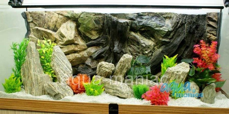 Aquarium rocks for your fish tank hard scape for Natural fish tank