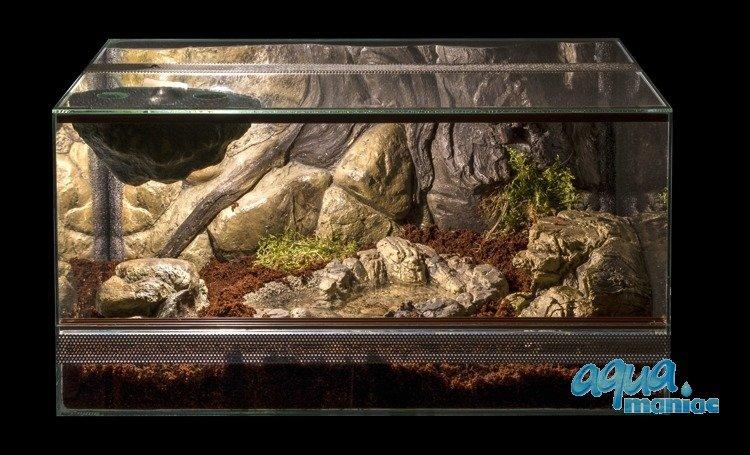 Terrarium Vivarium Pool For Reptiles Frogs Made From