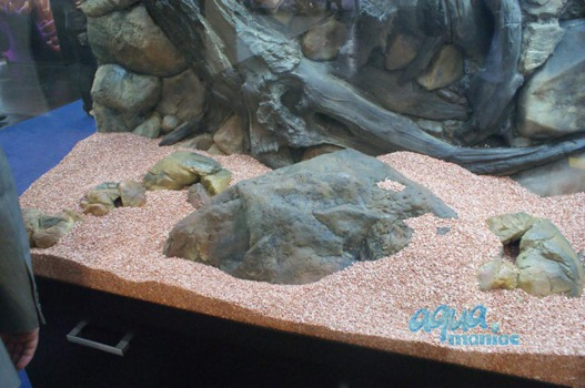 Large aquarium boulder empty inside