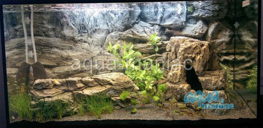 Large grey aquarium rock